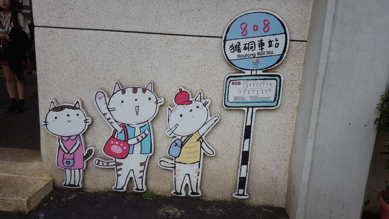 cats signs